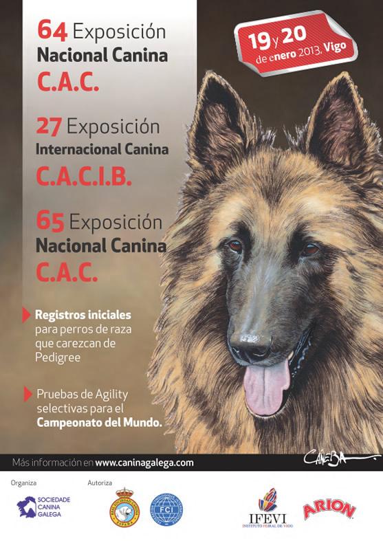 Vigo, 18 y 19 Enero 2013: 64 y 65 exposicion nacional canina de Vigo y 27 exposicion internacional canina.